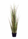 "48"" Artificial Grass/Reeds in Nursery Pot - Set of 2"
