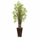 5.5� Grass Bamboo Plant with Decorative Planter