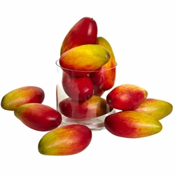 "5.5"" Weighted Artificial Mangos (Set of 12)"