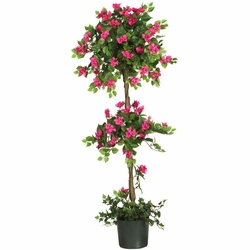 5' Mini Bougainvillea Topiary