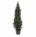 5' Mini Cedar Pine Tree (Indoor/Outdoor)