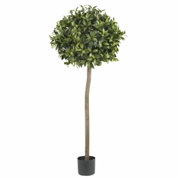 5' Sweet Bay Ball Topiary Silk Tree