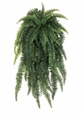 52 inch length Weeping Boston Silk Fern Bush x 55 Fronds in Green