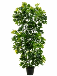 "56"" Artificial EVA Schefflera Tree in Pot - Set of  2"