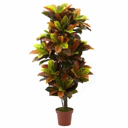 56� Croton Plant (Real Touch)