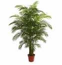 6.5' Areca Palm UV Resistant (Indoor/Outdoor)