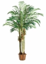 6.5' Artificial Robellini Silk Palm Tree x 3 Trunks