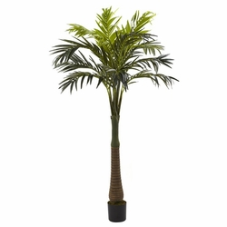 6.5� Coconut Palm Silk Tree
