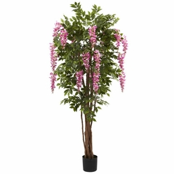 6.5� Wisteria Silk Tree
