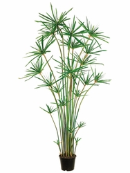 6' Artificial Cypress Grass Tree Plant in Pot
