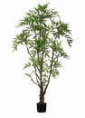 6' Artificial Outdoor Ming Aralia Tree with 842 Leaves - Set of 2