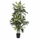 6' Bamboo Palm Silk Tree