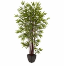 6� Bamboo Silk Tree w/Planter