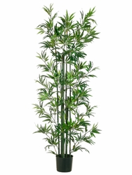 Set of 2 - 6' Bamboo Silk Trees in Pot with Natural Green Trunks