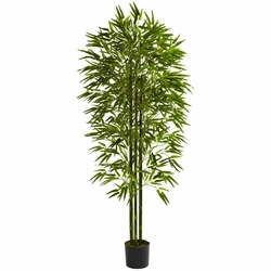 6' Bamboo Tree UV Resistant (Indoor/Outdoor)