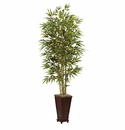 6� Bamboo Tree w/Decorative Planter