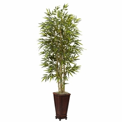 6' Bamboo Tree w/Decorative Planter