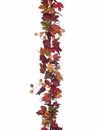 6' Artificial Canadian Maple Garland - Set of 6 (Shown in Mix)