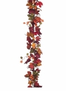 6' Canadian Maple Garland - Set of 6 (Shown in Mix)