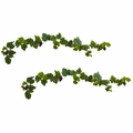 6� Grape Leaf Deluxe Garland w/Grapes (Set of 2)