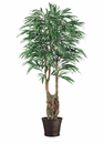 6' WEEPING SILK FICUS TREE WITH 1,140 LEAVES IN CONTAINER