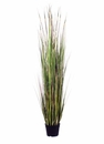 "60"" Artificial Grass/Reeds in Nursery Pot"