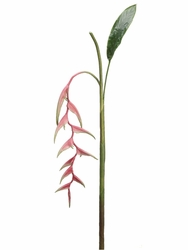 "60"" Artificial Heliconia Hanging Spray Stem (shown in pink) -Set of 6"