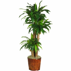 """62"""" Dracena with Basket Silk Plant (Real Touch)"""