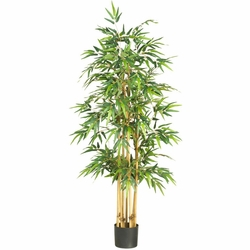 "64"" Bamboo Silk Tree"