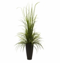 64� River Grass in Decorative Planter (Indoor/Outdoor)