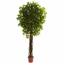 7.5' Ficus Tree UV Resistant (Indoor/Outdoor)