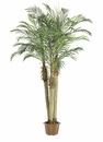 7.5' Robellini Artificial Palm Tree x3 in Pot in Green