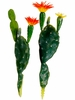 "7.75"" & 8.5"" Artificial Prickly Pear Cactus Set"