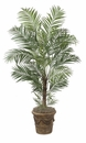 7' Deluxe Areca Palm Tree - Non Potted