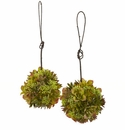 7� Mixed Succulent Hanging Spheres (Set of 2)