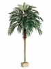 Set of 2 - 7' Phoenix Palm Silk Trees