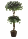 7' SILK FICUS DOUBLE BALL TOPIARY