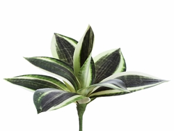 "8"" Artificial Mini Bromeliad Plant Pick"