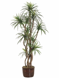 8' ARTIFICIAL YUCCA TREE X 10 STALKS IN PLANTER
