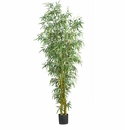 8� Fancy Style Bamboo Silk Tree