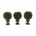 "8.5"" Artificial Cedar Ball Topiary in Urns (Set of 3)"