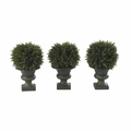 "9"" Cedar Ball Topiary (Set of 3)"