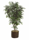9' SILK FICUS TREE IN WILLOW PLANTER