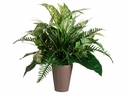 "19"" Artificial Aglonema, Fern and Grass Plant in Ceramic Pot"