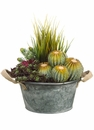 Artificial Cactus Arrangement in Pot