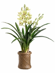 Artificial Cymbidium Orchid Plant Arrangement in Basket