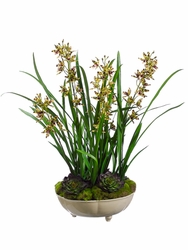 "26"" Artificial Silk Mini Cymbidium Orchid Plant with Moss Succulent Arrangement in Ceramic Bowl"