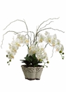 Artificial Silk Phalaenopsis Orchid Plant Arrangement in Ceramic Pot - Set of 2