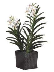 Artificial Silk Vanda Orchid Plant in Woven Basket