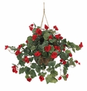 Red Begonia Hanging Flower Basket
